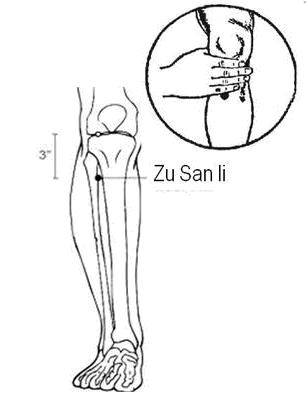 Loc-Zu-San-Li1